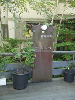 秋篠の森.jpg