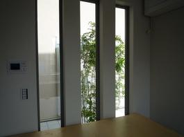 中庭 002.jpg